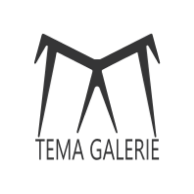 tema galerie-cas client-marketing