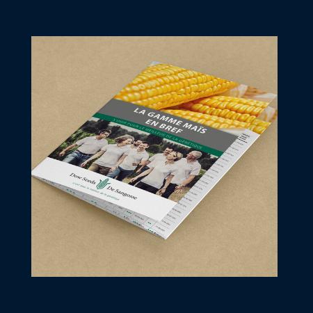 brochure-de-sangosse-marketing-ciliabule
