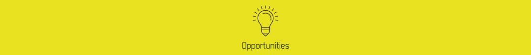definir-facteurs-internes-externes-swot-matrice-opportunité
