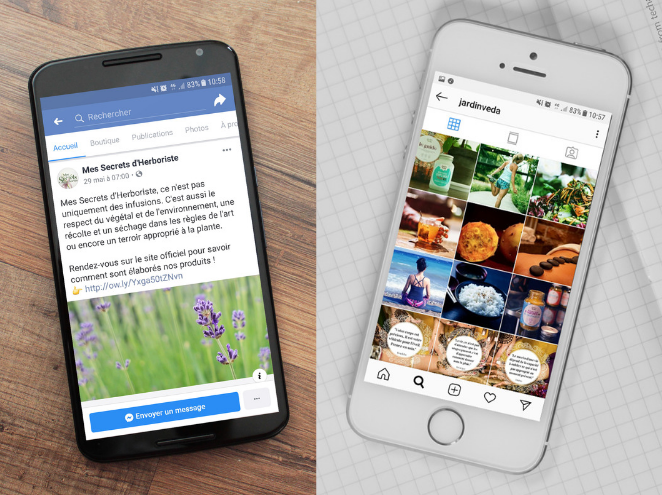mes-secrets-dherboriste-jardin-veda-facebook-instagram-reseaux-sociaux-ciliabule-content-marketing